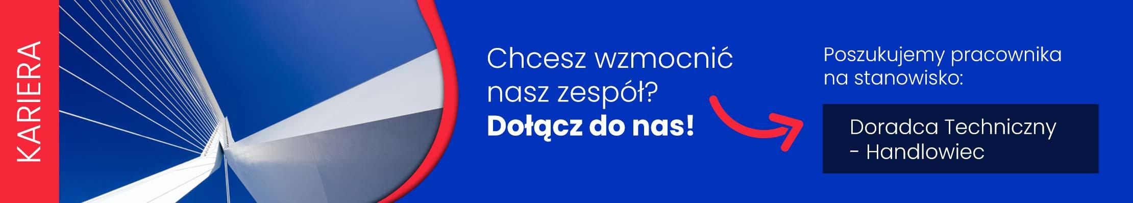 Kariera w MIPA Polska